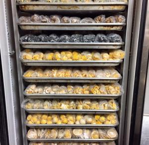 Pasta-Storage